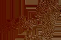 noopsadul_logo